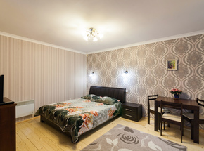 Cozy 1 bedroom apartment in Lviv